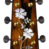 maingard-guitars-acoustic-custom-handmade-musical-instruments-headstock-29