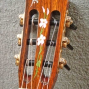 maingard-guitars-acoustic-custom-handmade-musical-instruments-headstock-43