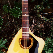 maingard-guitars-repairs-custom-handmade-acoustic-5