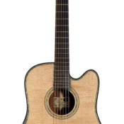 maingard-guitars-steven-seagal-luthier-custom-acoustic-dreadnought-1