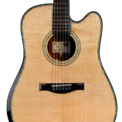 maingard-guitars-steven-seagal-luthier-custom-acoustic-dreadnought-2